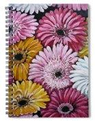 Gebera Daisies Spiral Notebook