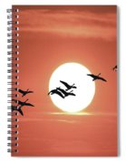 Geese Against The Sun Spiral Notebook