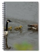 Geese And Goslings At The Flint River Spiral Notebook