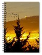 Geese In Golden Sunset Spiral Notebook