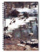 Geese On An Icy Pond Spiral Notebook