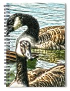Geese On The Pond II Spiral Notebook