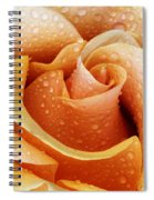 Gemini Dew Spiral Notebook
