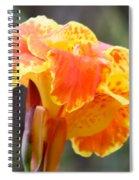 Gentle Awakening Spiral Notebook