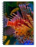 Gentle Danger Spiral Notebook