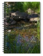 Gentle Flow Spiral Notebook