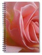 Gentle Pink Rose Spiral Notebook
