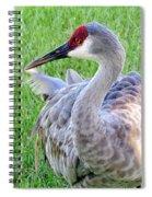 Gentle Touch Spiral Notebook