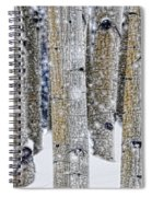 Gently Falling Forest Snow Spiral Notebook