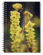 Gently Falling Spiral Notebook