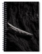 Gently Resting Spiral Notebook