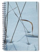 Geometry Grass Spiral Notebook