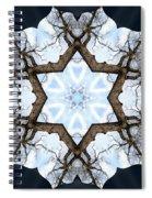 Geometry Tree Spiral Notebook