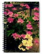 Geranium And Jasmine Spiral Notebook