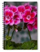Geranium Spiral Notebook