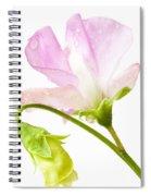 Geranium Pink Spiral Notebook