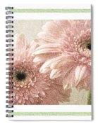 Gerber Daisy 3 Spiral Notebook