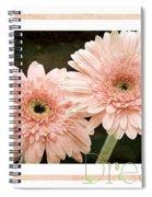 Gerber Daisy Dream 5 Spiral Notebook