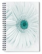 Gerber Daisy Flowers In Teal Spiral Notebook