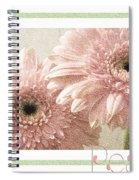 Gerber Daisy Peace 3 Spiral Notebook