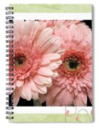 Gerber Daisy Peace 4 Spiral Notebook