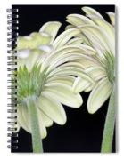 Gerbera Farewell Spiral Notebook