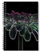 Gerbera Glow 4 Spiral Notebook