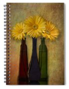 Gerbera Trio Spiral Notebook