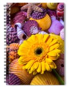 Gerbera With Seashells Spiral Notebook