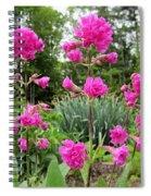 German Catchfly Pink Spiral Notebook