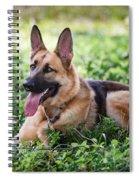 German Shepherd Dog Spiral Notebook