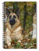 German Shepherd Dogs Spiral Notebook