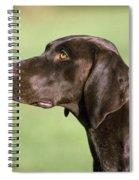 German Short-haired Pointer Dog Spiral Notebook