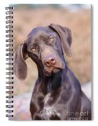 German Short-haired Pointer Puppy Spiral Notebook