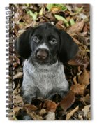 German Wire-haired Pointer Puppy Spiral Notebook