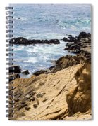 Gerstle Coastline Spiral Notebook
