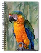 Getting A Good Kick Start Of The Day Spiral Notebook
