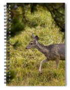 Getting Out Of Sight Spiral Notebook