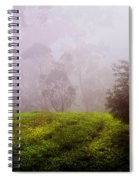 Ghost Tree In The Haunted Forest. Nuwara Eliya. Sri Lanka Spiral Notebook