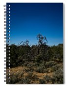 Ghost Tree Of The West Spiral Notebook