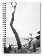 Ghost Tree Site Spiral Notebook