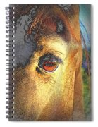 Ghostly Encounter Spiral Notebook
