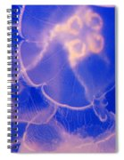 Ghostly Spiral Notebook