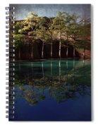 Ghostly Quiet Spiral Notebook