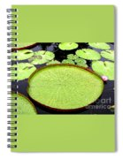 Giant Amazon Lily Pads Spiral Notebook