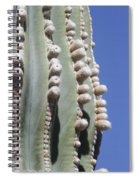 Giant Cardon Begins To Bloom Spiral Notebook