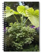 Giant Elephant Ears Spiral Notebook