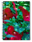 Giant Poppies Spiral Notebook