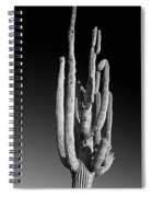 Giant Saguaro Cactus Portrait In Black And White Spiral Notebook