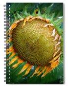 Giant Sunflower Drama Spiral Notebook